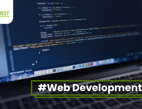 Web Design and Web Development Guidelines in 2019