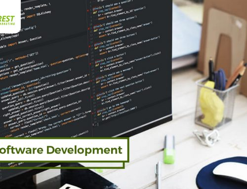 Software Development Trends in 2019