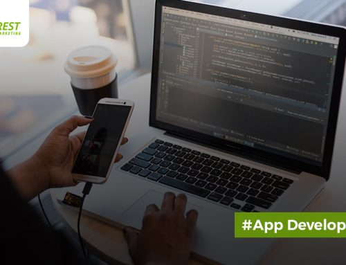 Being an App Developer 101: The Ultimate Guide for Newbies