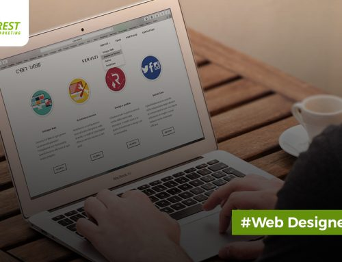 The Complete WordPress Package For Every Website Designer Like You